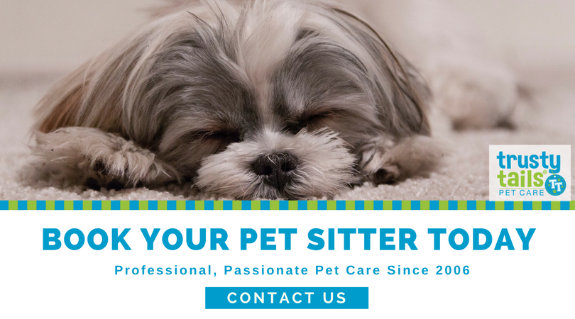 Book Your Pet Sitter Today