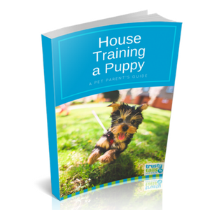 Ebook House Training a Puppy