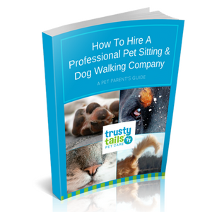 How to Hire A Professional Pet Sitting and Dog Walking Company