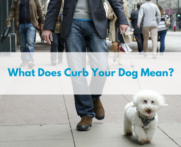 What Does Curb Your Dog Mean?