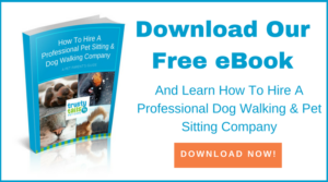 How to hire a Pet Sitting and Dog Walking Company
