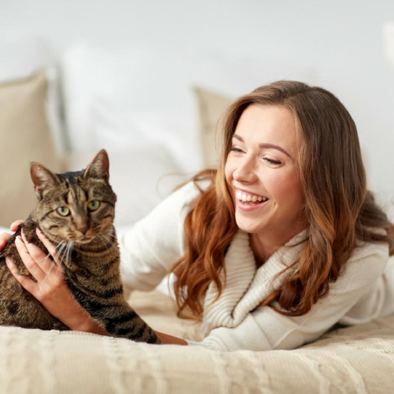 professional cat sitter