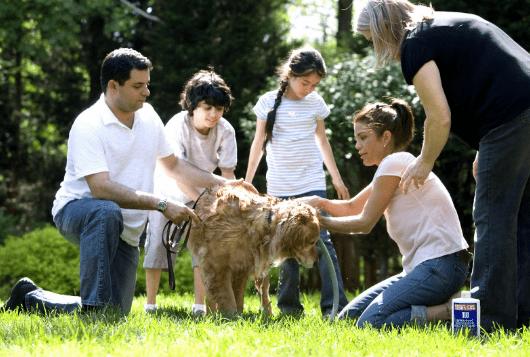 montclair-pet-sitter