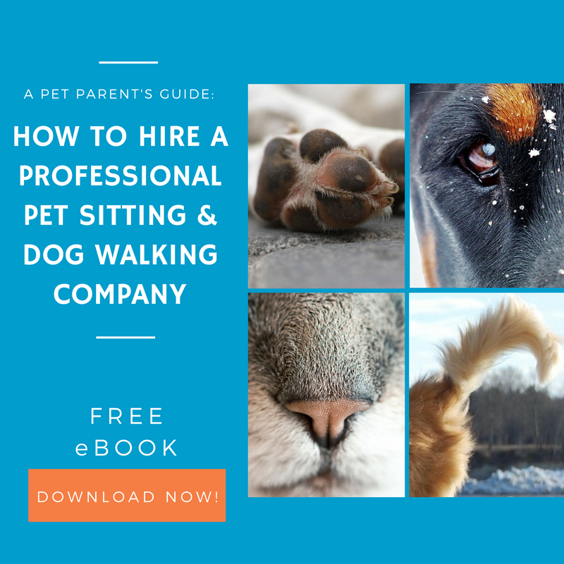 Free Download - How to Hire
