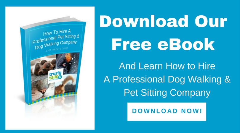 Free Ebook How to Hire a Pet Sitter or Dog Walker