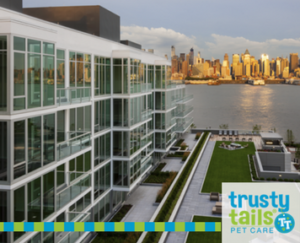 Pet Friendly Apartments and Condos in Weehawken, NJ - Trusty Tails ...