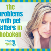 problems with hiring a pet sitter