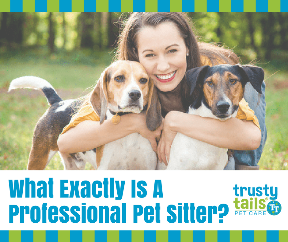 what is a professional pet sitter