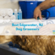 Best Edgewater NJ Dog Groomers 2