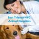 Best Tribeca NYC Animal Hospitals