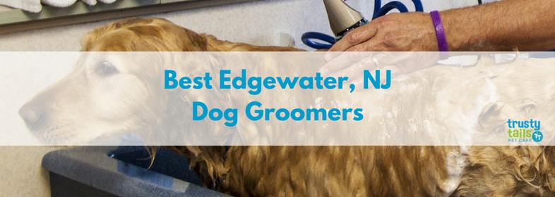 Best edgewater nj dog groomers