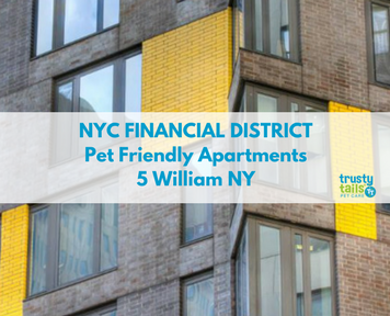 NYC Financial District Pet Friendly Apartments - 5 William NY, 15 William Street (1)
