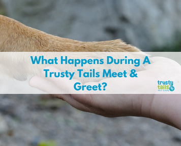 What happens during a trusty tails meet & greet-