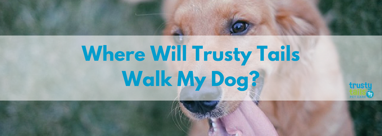 Where will Trusty Tails walk my dog-