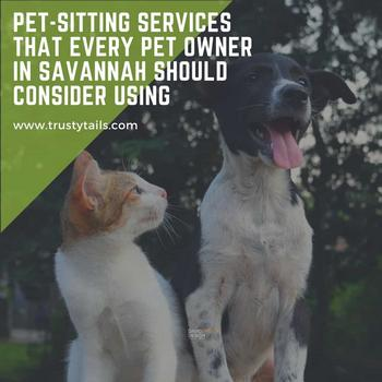 Pet-Sitting Services That Every Pet Owner In Savannah Should Consider Using