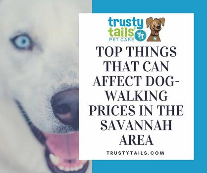 Top Things That Can Affect Dog-Walking Prices In The Savannah Area